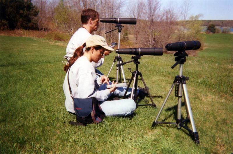 students observing