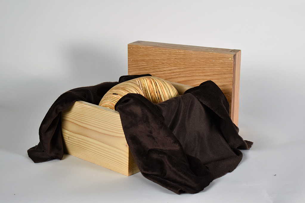 """A Bean in a Box"", Wood Construction by Rachel Robertson"
