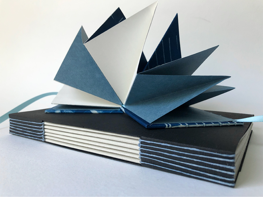 Starburst Book by Victoria Engling