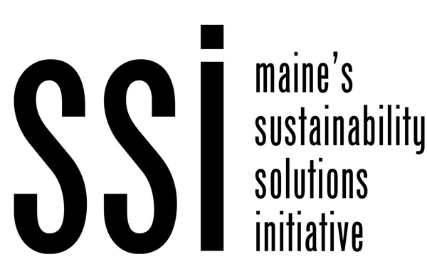 Sustainability Solutions Initiative