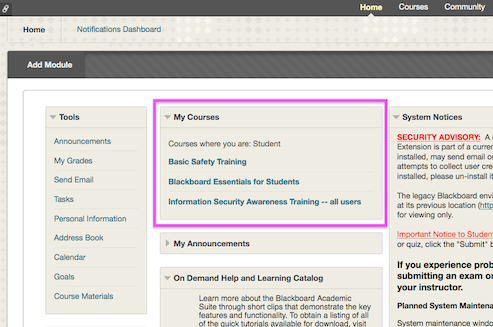 A screenshot of the Blackboard front page with the My Courses block highlighted in magenta.