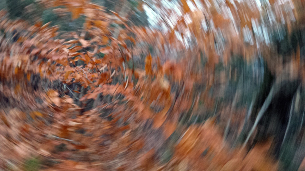 swirling fall leaves