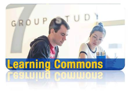 Visit the Learning Commons