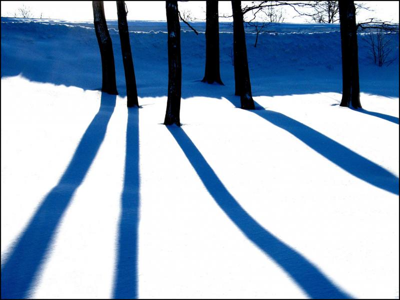 Blue Shadows, 2009