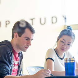 Students in one of the group study rooms in the library