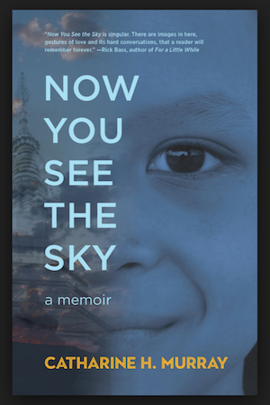 'Now You See the Sky' by Catharine Murray