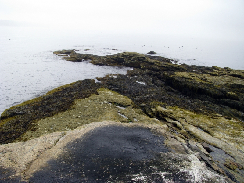 View of the sea over a rocky shore