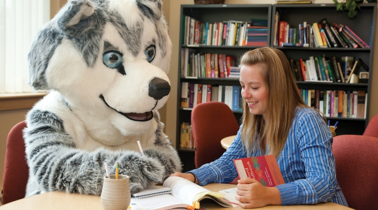 Student working with Champ the Husky.
