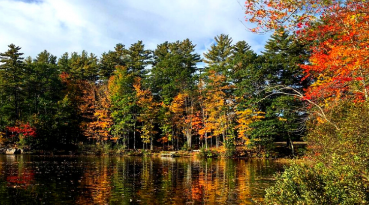 photo of red, orange, yellow, and green trees reflected in a lake