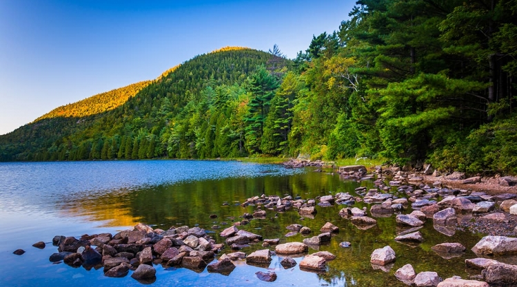 Rocky lake shore before an evergreen forest in the shadow of a mountain