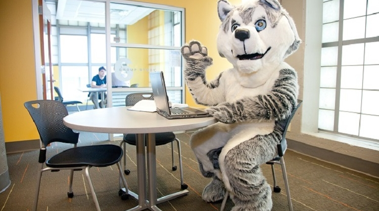 Picture of the USM Husky sitting in front of a group study room