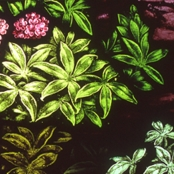 A detail of the stained glass window at the Stone House.