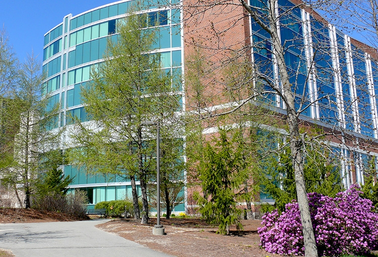 A paved path leading up to our Science Building on a bright spring day.