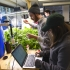 Students studying aquaponics in Bailey Hall