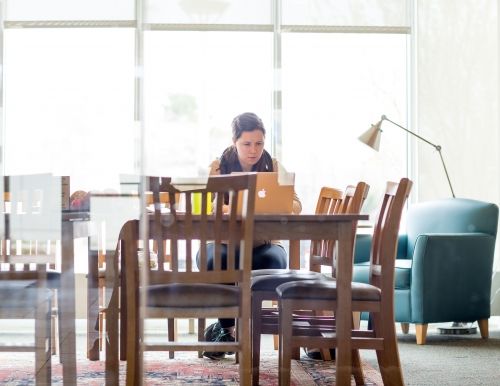 Student studying in Glickman Library