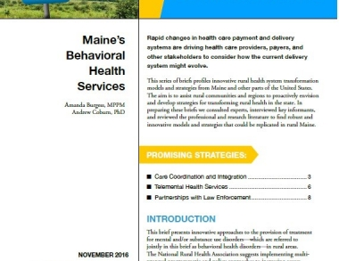 cover photo for Innovations in Rural Health System Developement