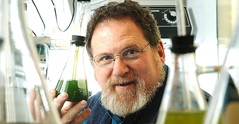 Professor Ira Levine has been awarded a Fulbright Distinguished Chair, the program's highest honor. The Lewiston-Auburn College professor of Natural and Applied Sciences will travel to India to conduct aquaculture research.